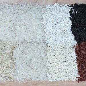 Picture for category The Ultimate Guide to Asian Rices