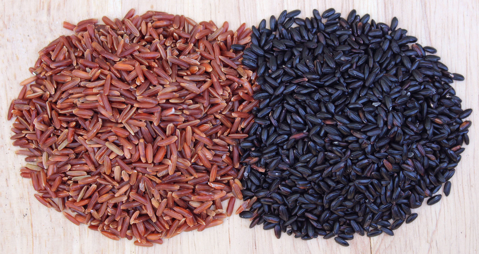 What Black Rice Looks Like