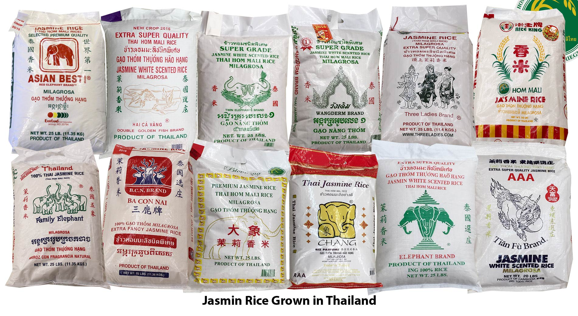White Jasmine Rices in American Supermarkets